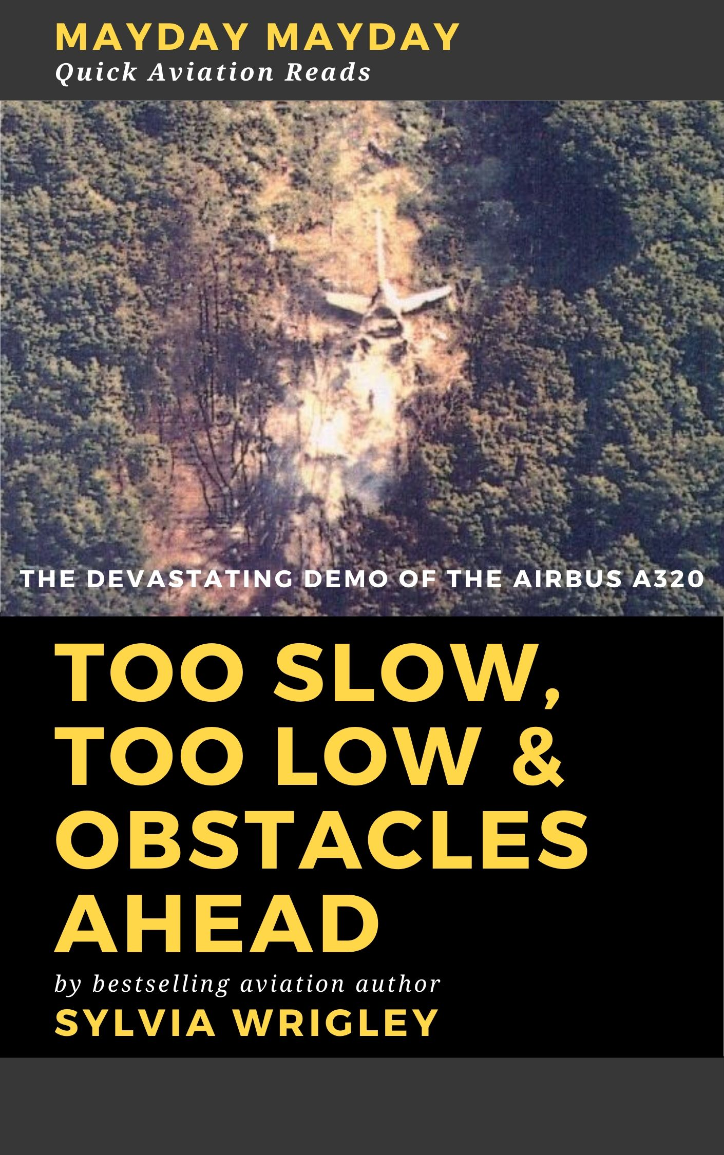 Too Slow, Too Low & Obstacles Ahead: The Devastating Demo of the Airbus 320